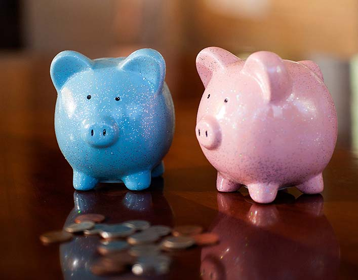 Blue and pink piggy banks